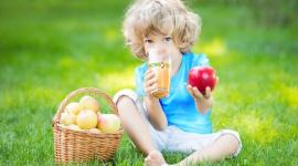 Nowa Piramida Zdrowego Żywienia i Stylu Życia Dzieci i Młodzieży a miejsce soków Zdrowie, BIZNES - Nieprawidłowe żywienie, zbyt niska konsumpcja warzyw i owoców oraz niedostosowanie diety do potrzeb organizmu – to częste powody zaburzeń żywieniowych, nadwagi czy otyłości, także wśród dzieci.